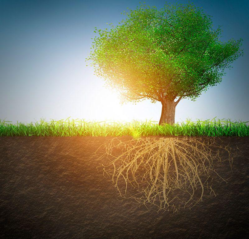 Центрирование в генеративном подходе - диссоциация и полярности